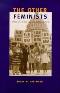 The Other Feminists book cover